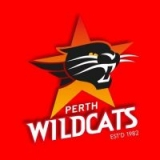 ¤ Perth Wildcats